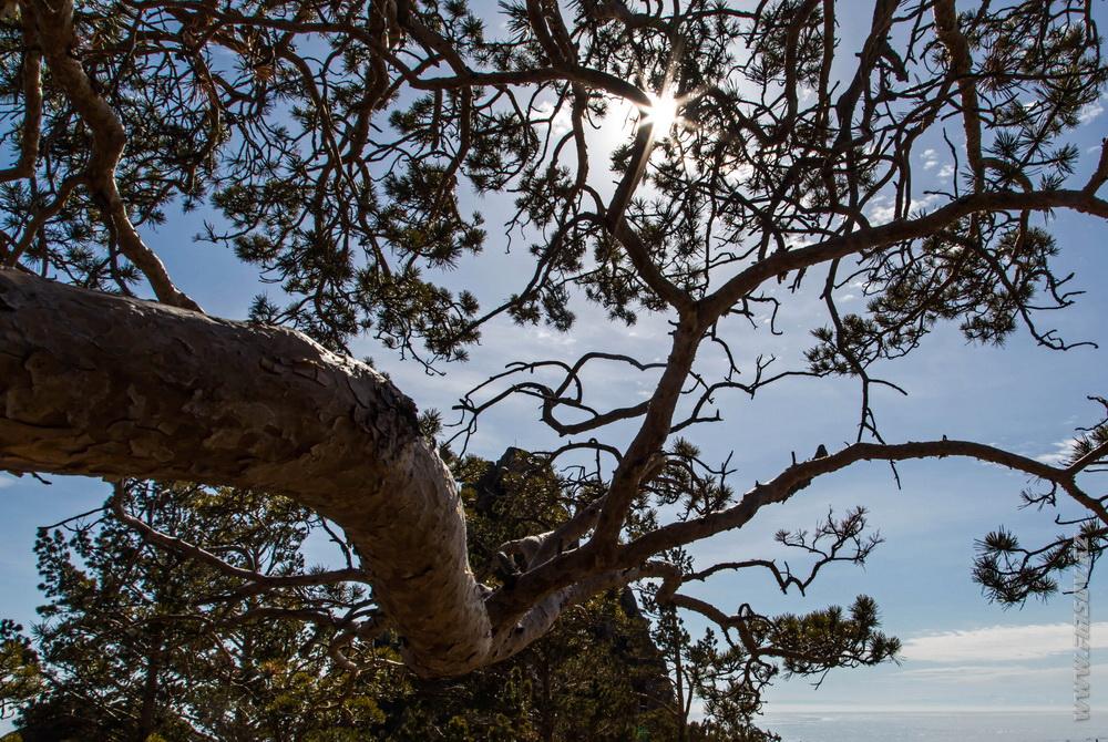 Baikal_lake 22.JPG