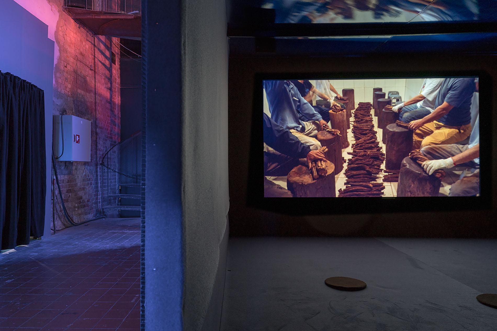 Immersive Exhibition Celebrating Global Diversity