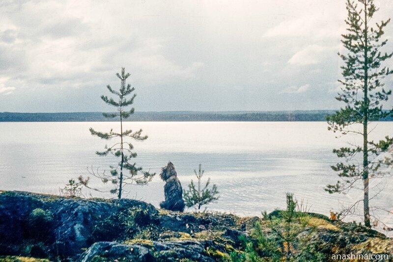 Онежское озеро, Лижемская губа