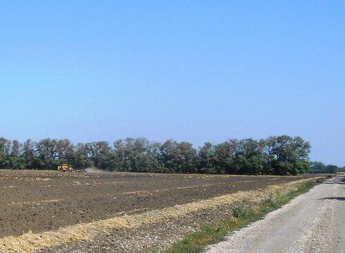 Трактор трудится ... DSCN4026 - 01.JPG