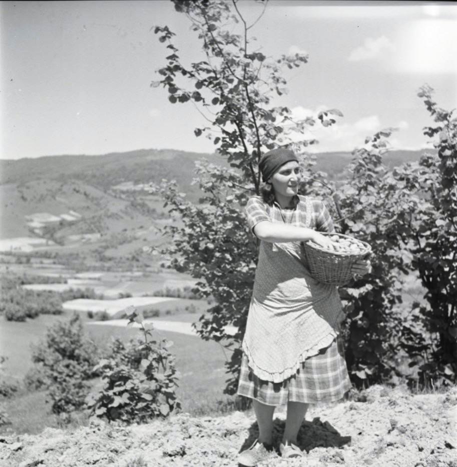 Женщина фермер, Высны Апса