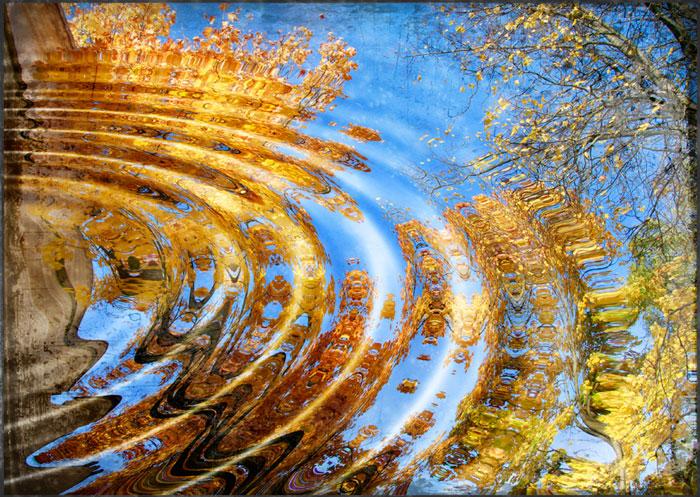 Открытки. Яркой осени! Отражение деревьев в лужах открытки фото рисунки картинки поздравления