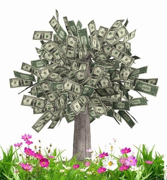 День финансиста. Вырастим денежное дерево