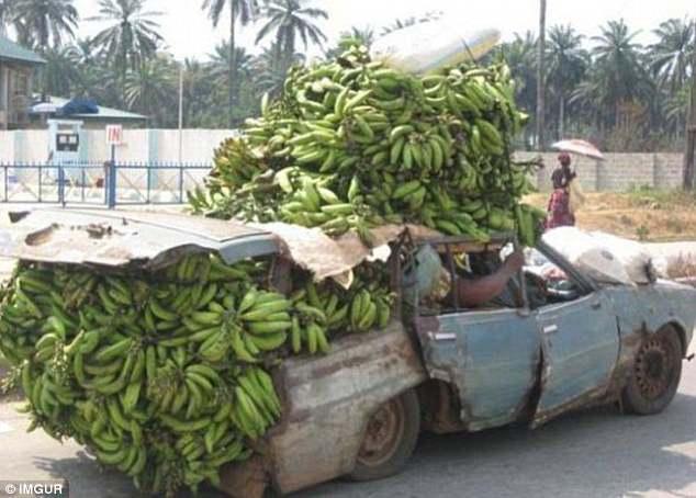 Этот автомобиль не подходит даже для перевозки одного банана, что уж говорить о тысяче.