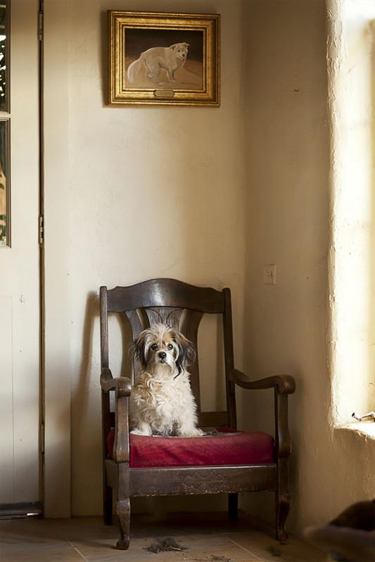 Кики, 15 лет, Седона, Аризона.
