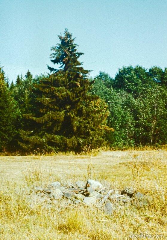 Поляна близ монастыря на Палий-острове