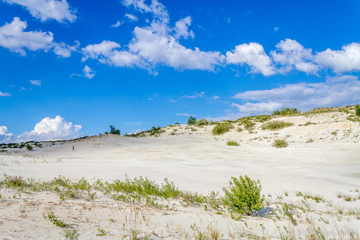 камышинский песчаный карьер фото 1