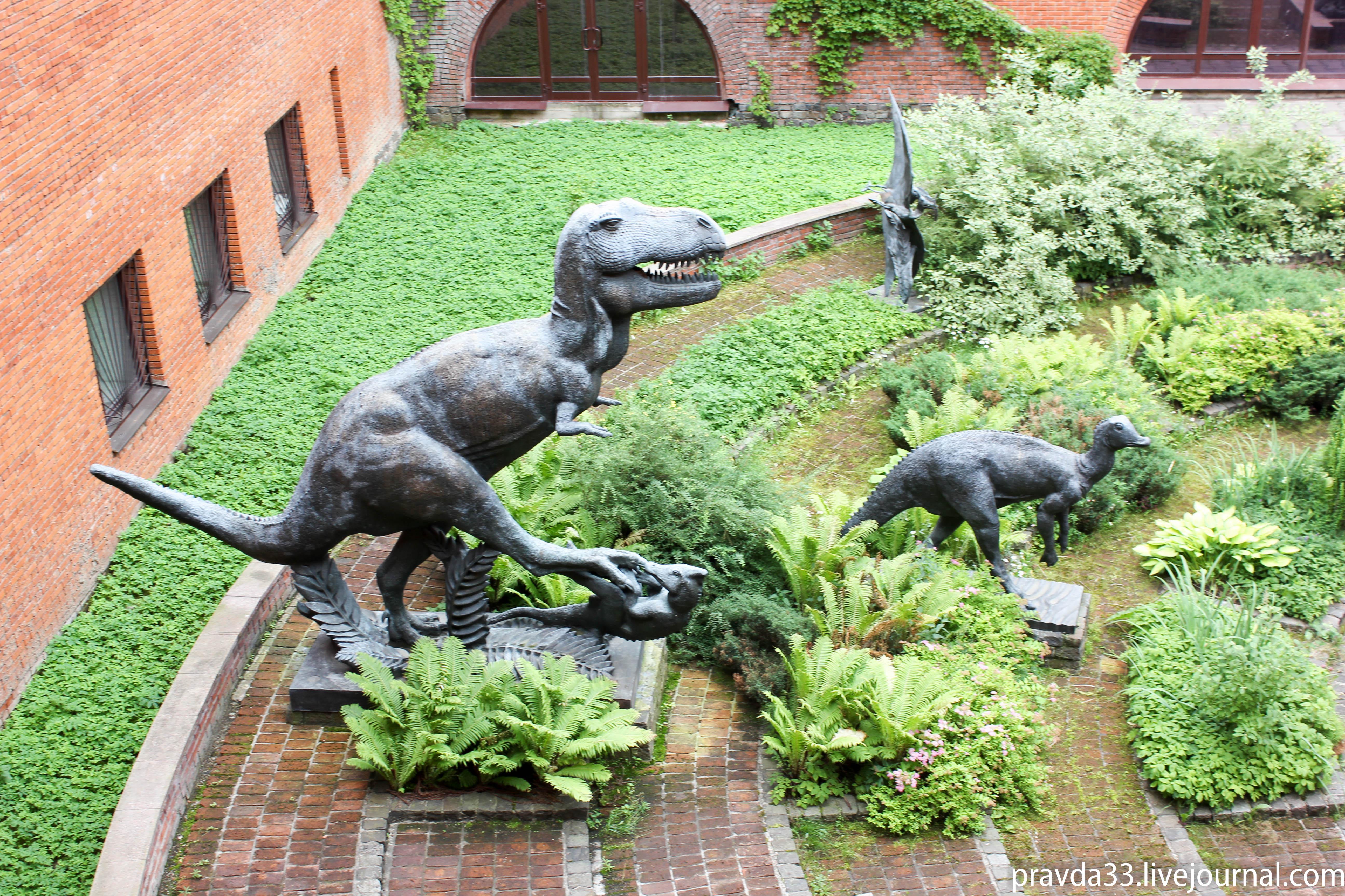 Музей палеонтологии-30.jpg