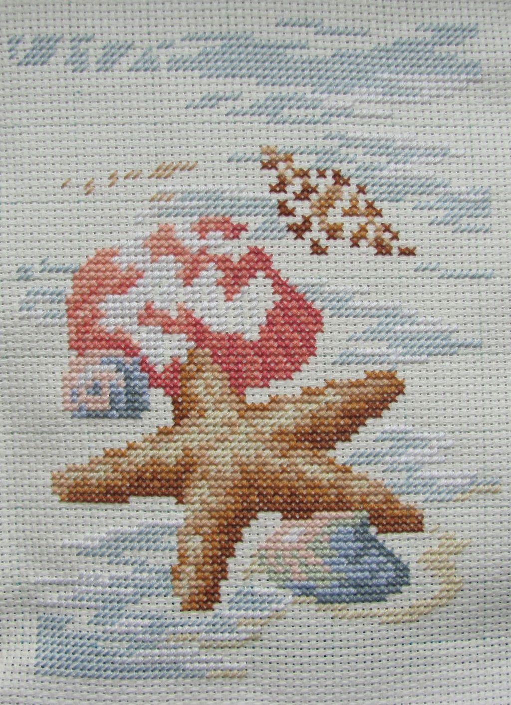 dim_6956_shells_in_the_sand_step_4.jpg