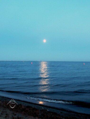 Дорога к Луне