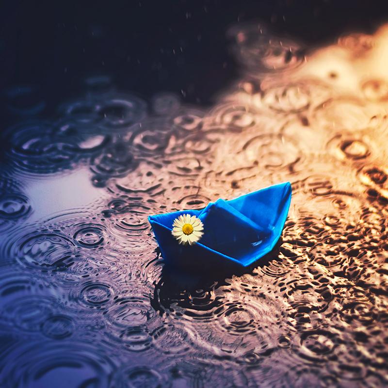 Бумажные кораблики / фотограф Ashraful Arefin