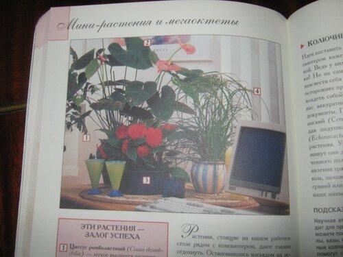 Записная книжка Натальи - Страница 5 0_1c2a94_d040383f_L