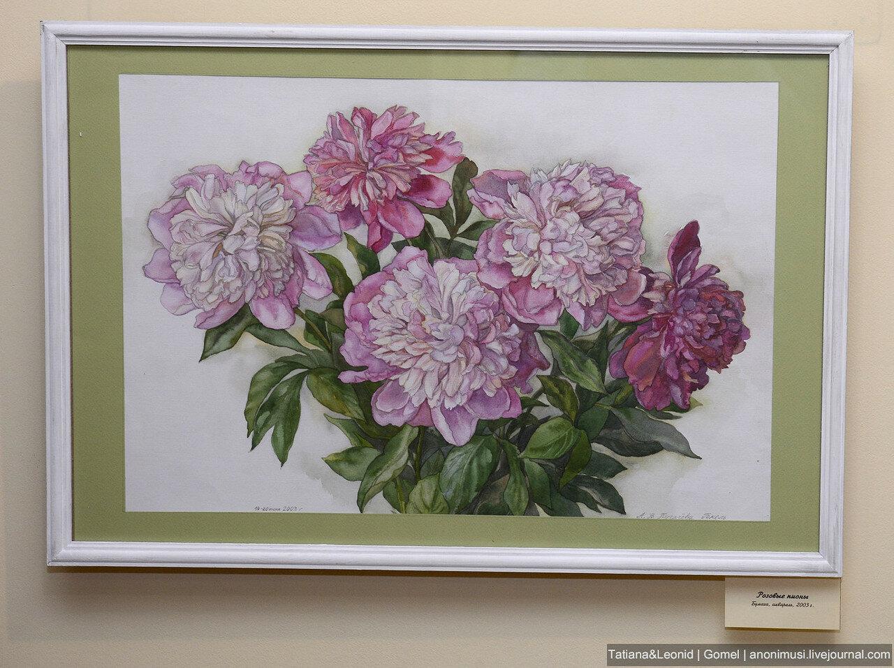 Выставка - Цветы у дома