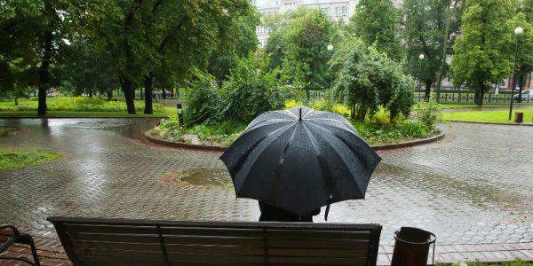 МЧС предупредило огрозах иураганном ветре вмосковском регионе