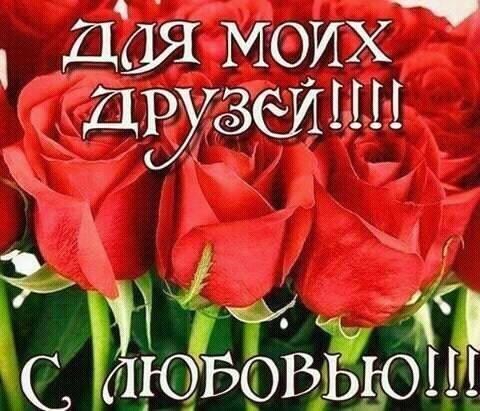 19959004_330540860701791_3167855410434731774_n.jpg