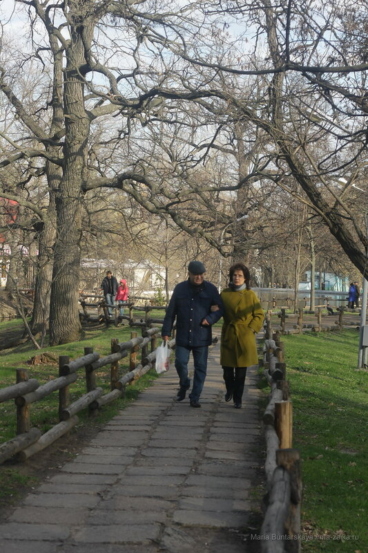 Весна, Саратов, городской парк культуры и отдыха, 26 апреля 2017 года