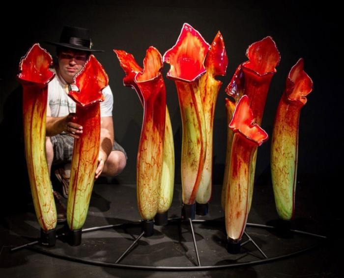 Гигантские цветы из стекла от Джейсона Гамрата