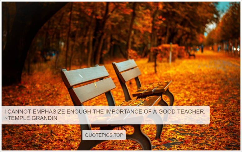 I cannot emphasize enough the importance of a good teacher. ~Temple Grandin