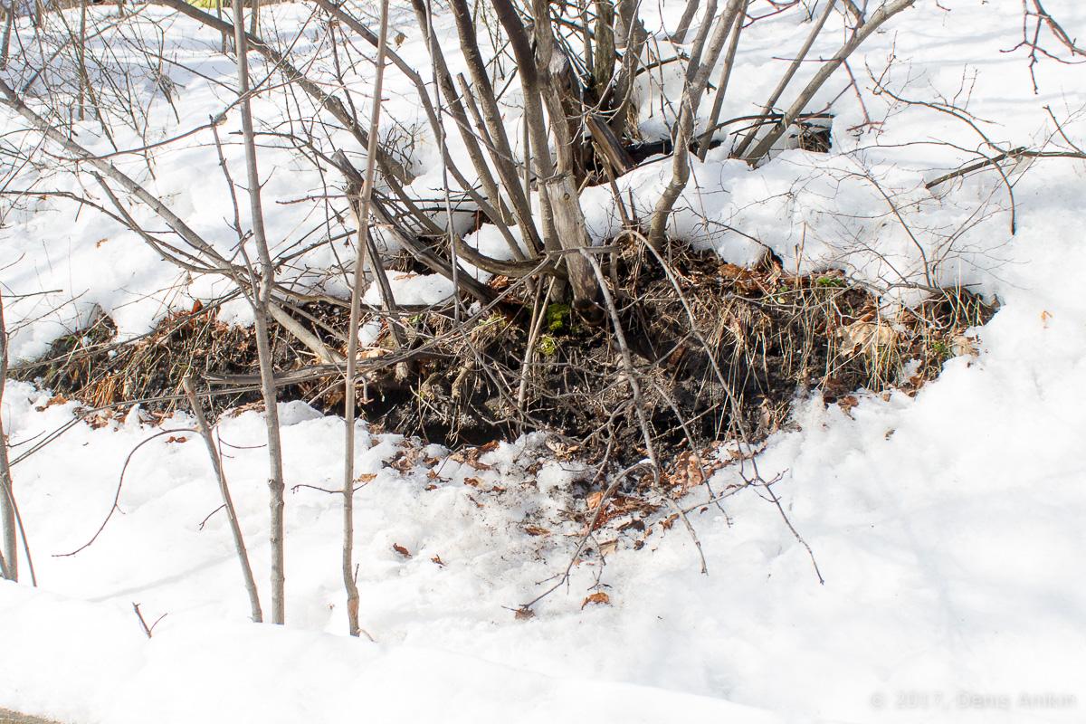 терренкур октябрьское ущелье зима Саратов фото 10