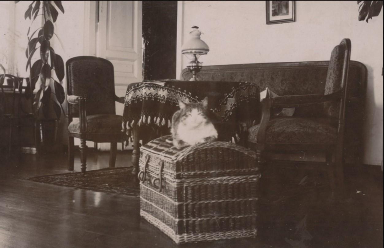 В доме Мяздриковых. сер. 1890-х