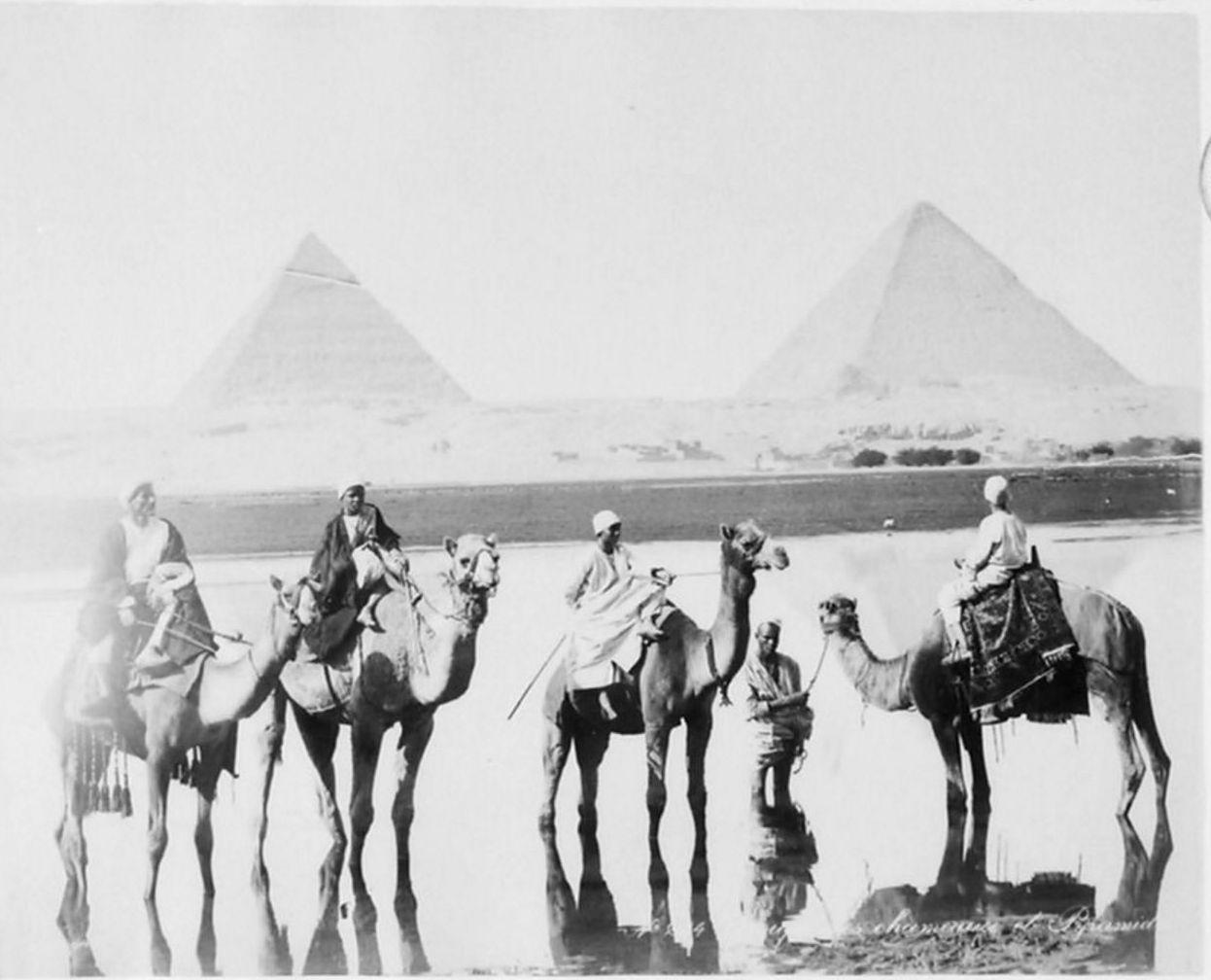 Гиза. Пирамиды.1893