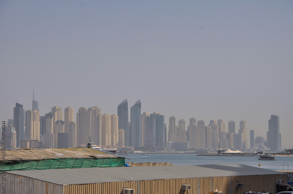 Dubai-Critic-(57).jpg