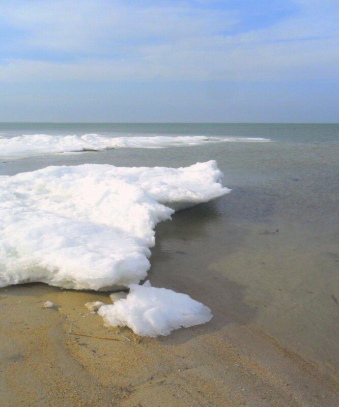 Берег, льды, у моря .... SAM_5643.JPG