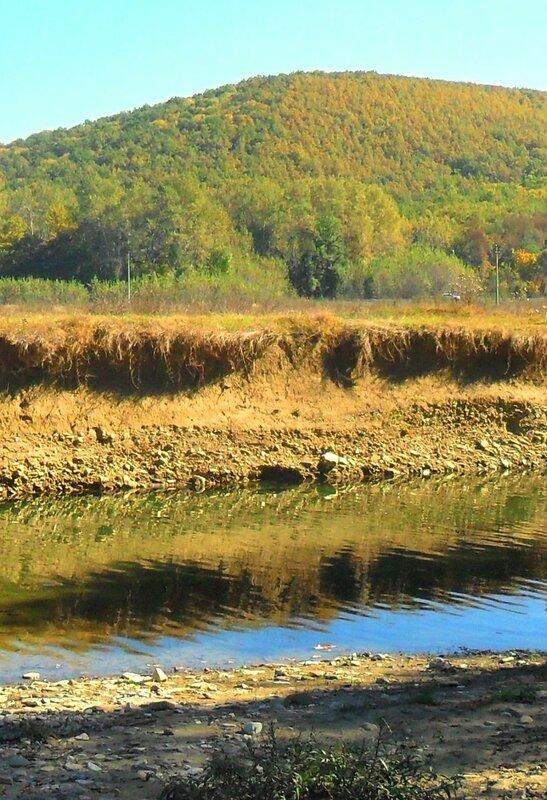 Осенний день, у реки ... SAM_4154 - 1 - 1.JPG