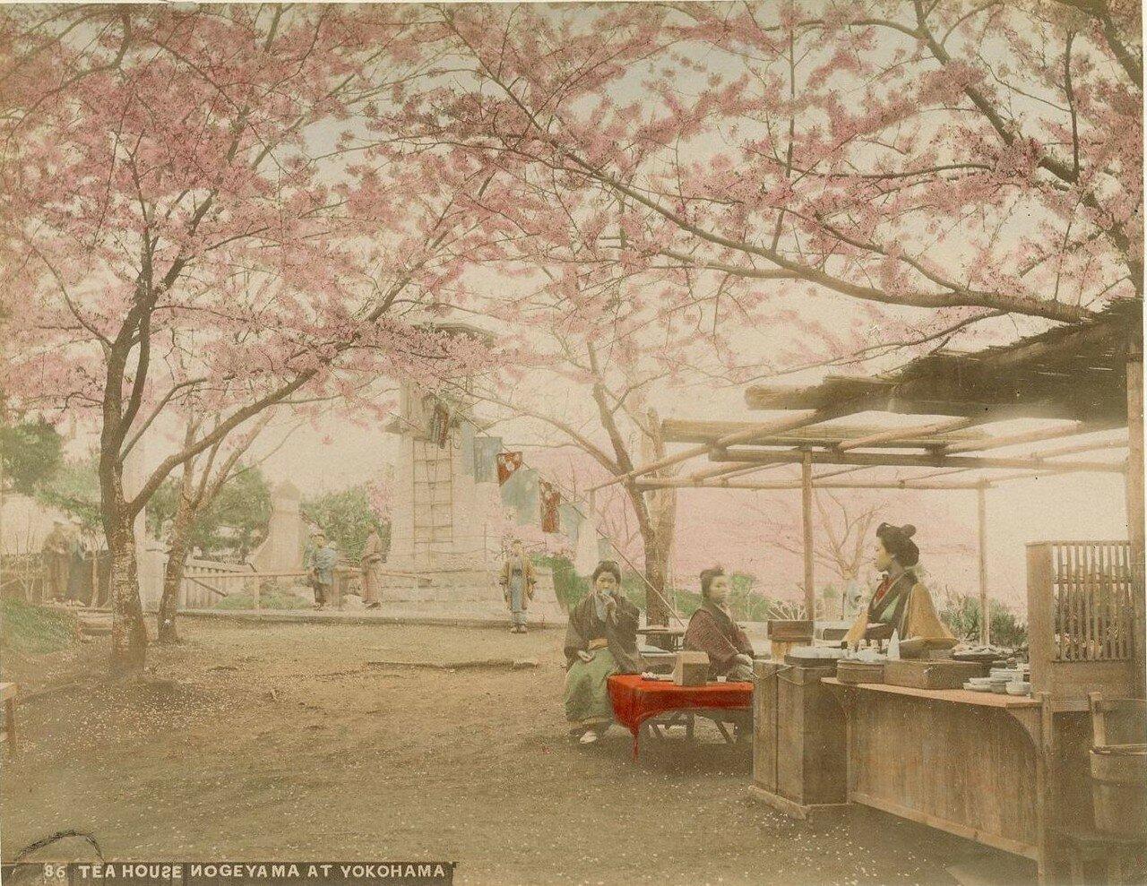 Иокогама. Чайный дом