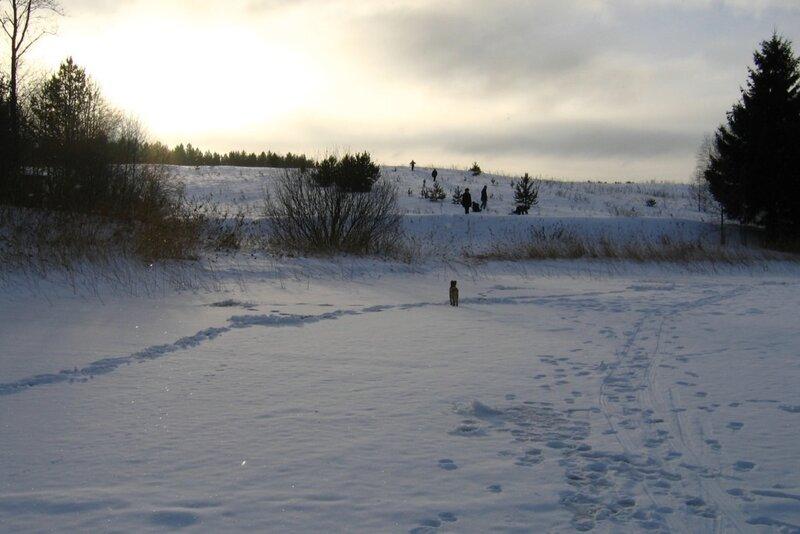 Зимний день на Селигере