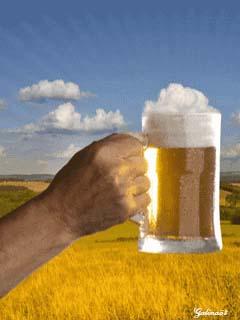 С днем пивовара! Пиво на фоне колосящегося поля