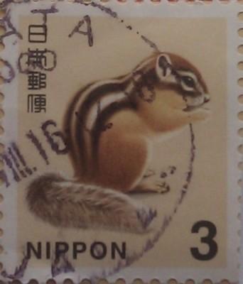 япония бурундук 3