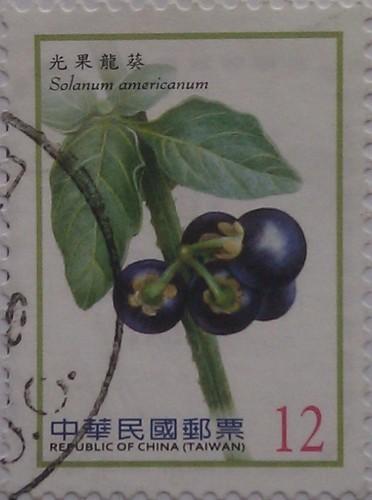 китай тайвань т.син ягода на веточке 12
