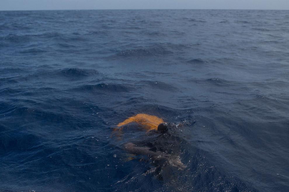 7. Утонувшие в море, 24 мая 2017. (Фото Chris McGrath):