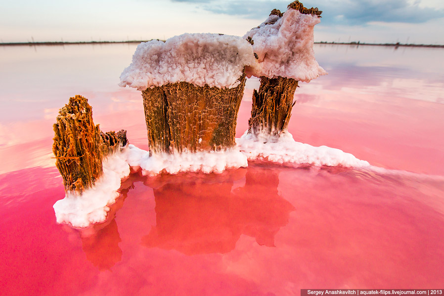 На самом деле, любой предмет, попавший в это озеро, через некоторое время превратится в подобны
