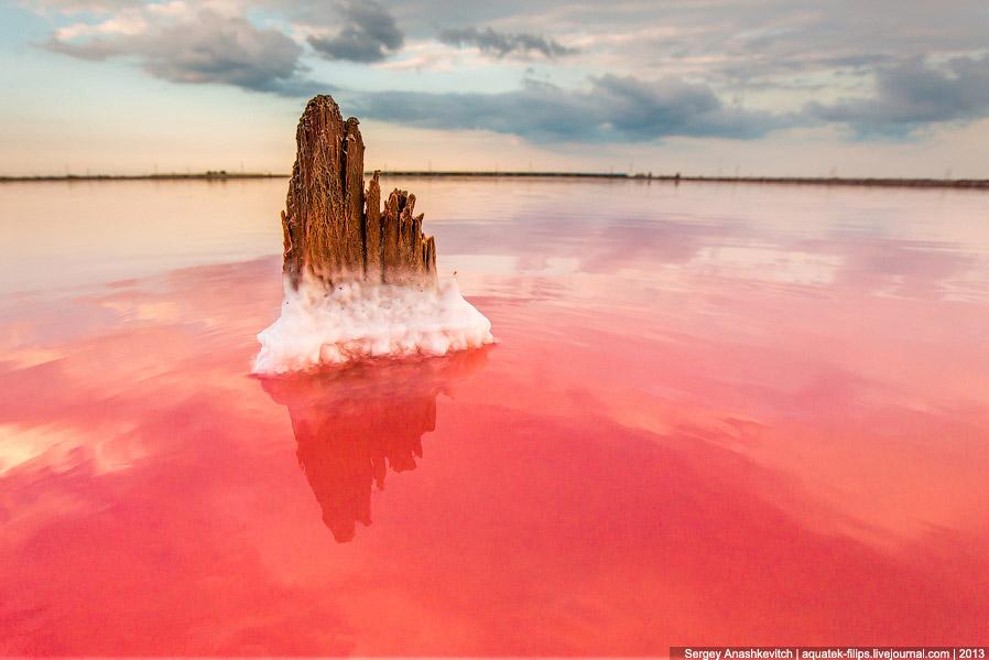 Из-за того, что в этом месте нет воды, а осталась только соль и грязь, выглядит оно совершенно
