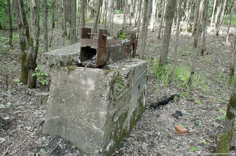 054. Измайловский парк. Руины. 04.06.17.01..jpg