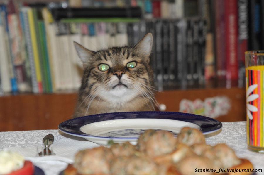 Уже час сижу над пустой тарелкой