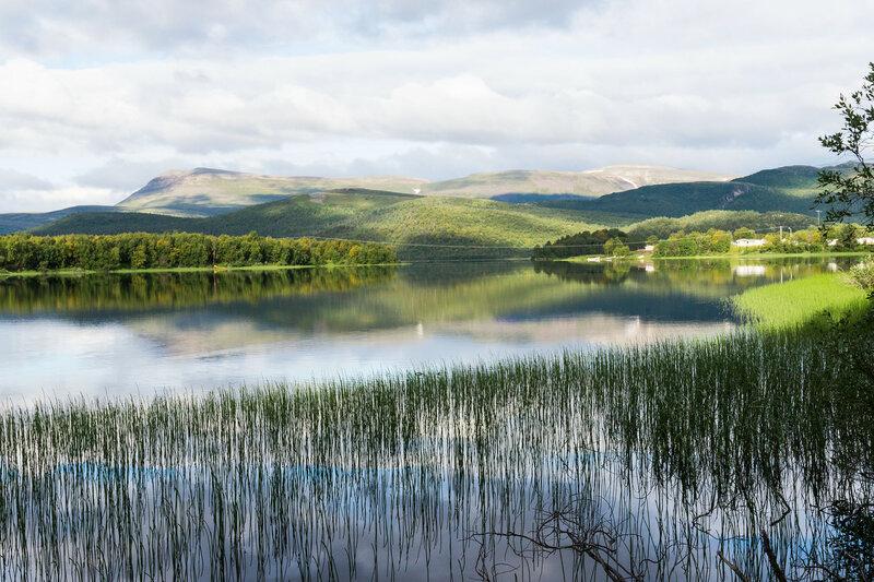 пейзаж на озере