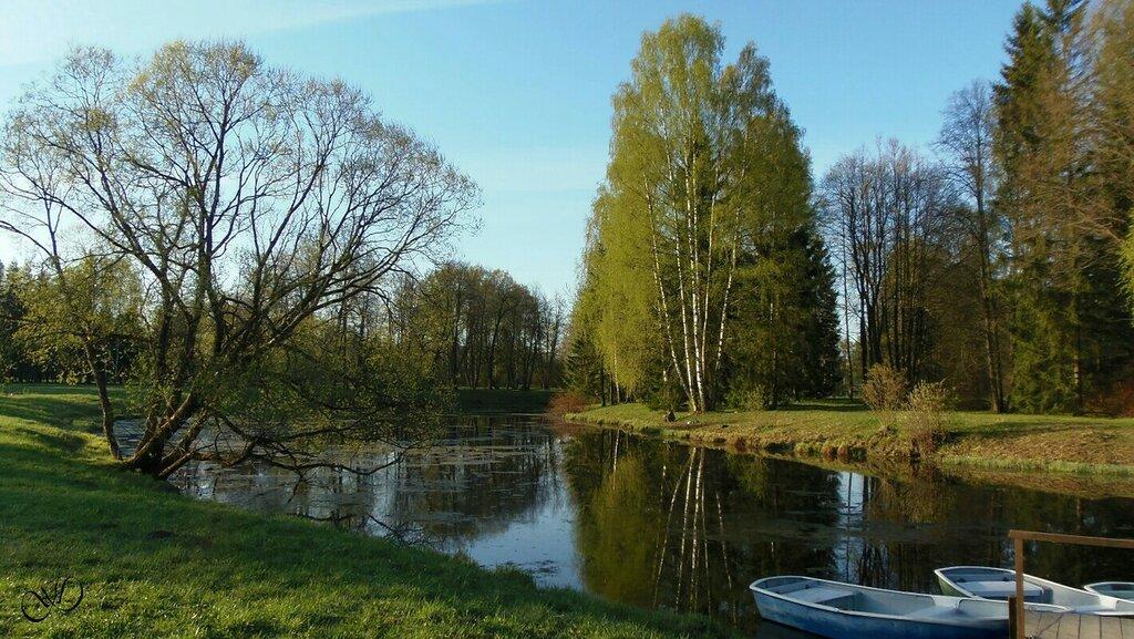 Павловский парк весной
