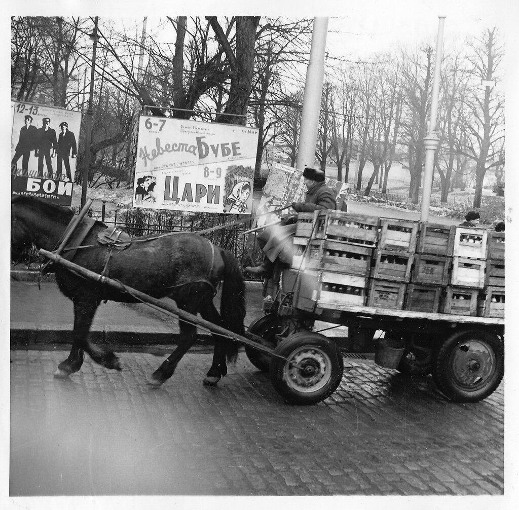 Выборг. Лошадь, казалось, была самым распространенным видом транспорта