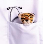 тигр в кармане
