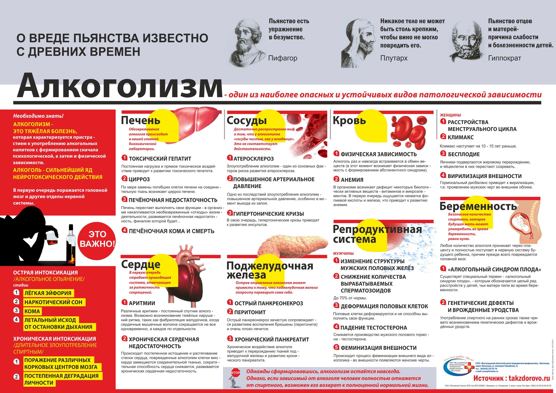 День трезвости в России 11 сентября. На что влияет алкоголь