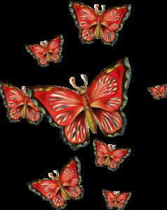 россыпи бабочек