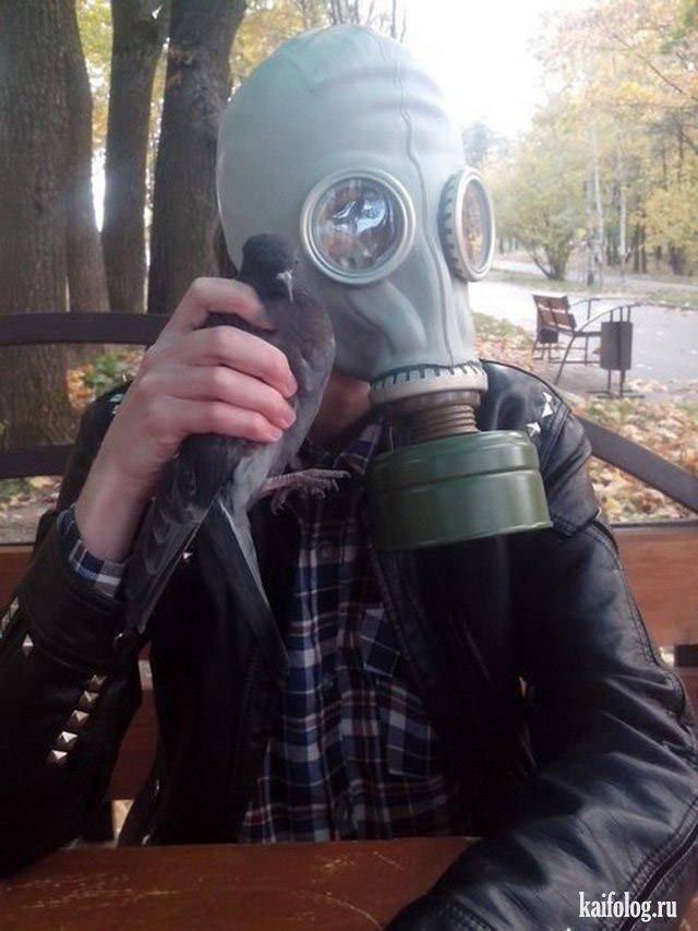 Русские маразмы и приколы