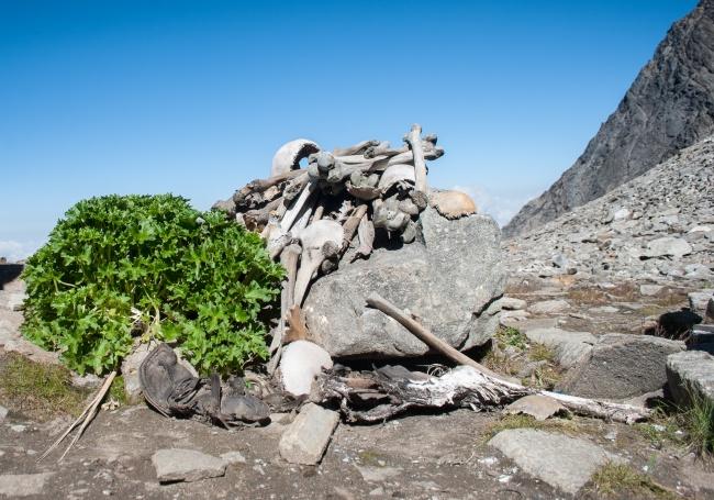© Wikimedia Commons  Останки 200человек , погибших странной смертью, пролежали надне этого о