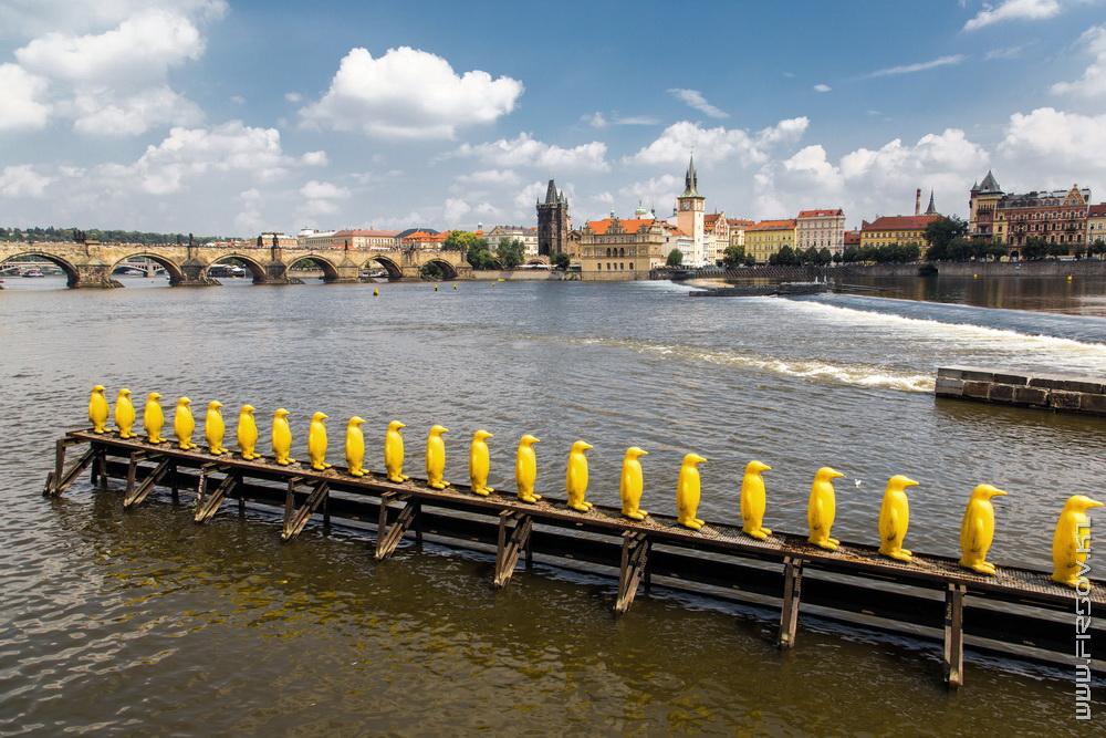 Prague 20.jpg
