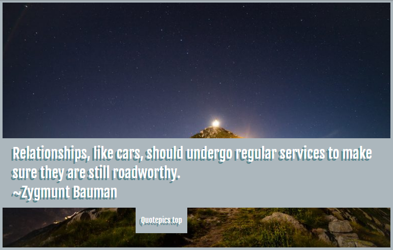 Relationships, like cars, should undergo regular services to make sure they are still roadworthy. ~Zygmunt Bauman