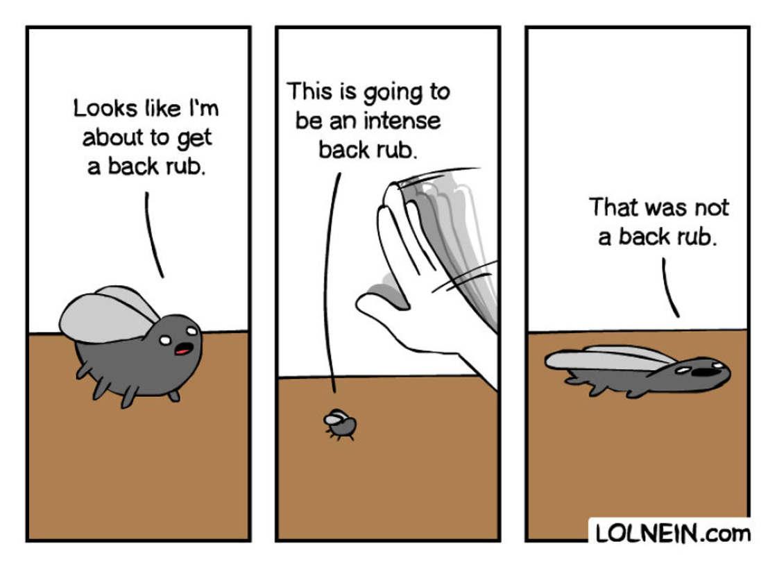 28 comics decales et hilarants de Lolnein