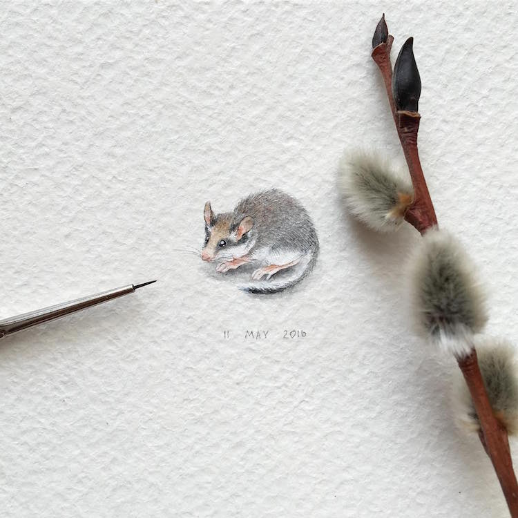 Miniature Paintings of Adorable Animals Capture Every Cute Little Detail